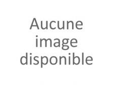 """Château DU CHAMP DES TREILLES """"Grand Vin"""" 2015 la bouteille 75cl"""
